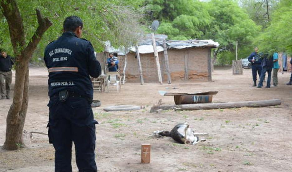 OPERATIVO Rímini afectó a policías, psicólogos, asistentes sociales y hasta un refugio para una de las víctimas.