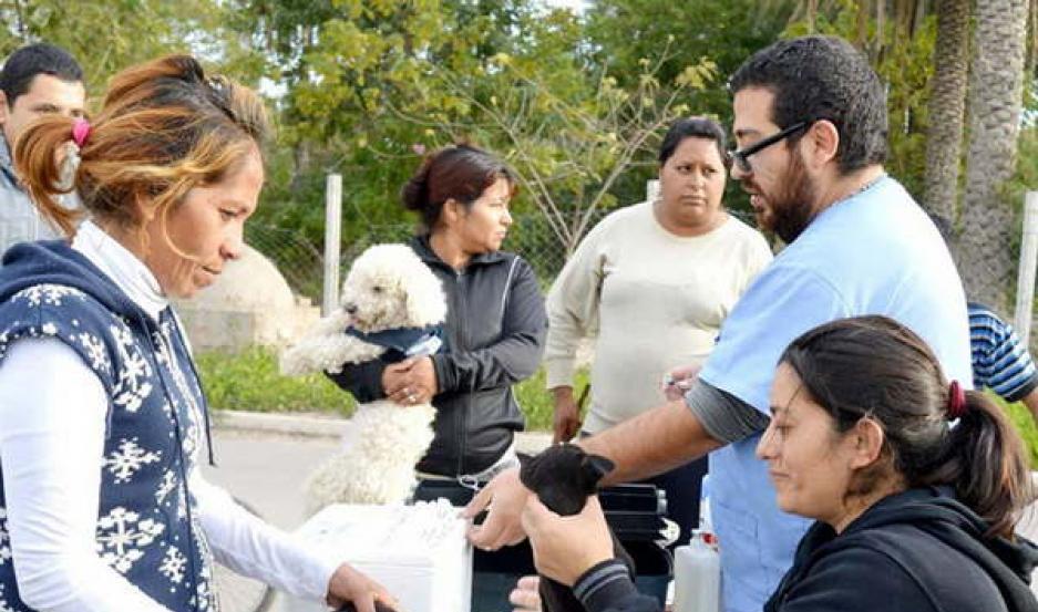 CUIDADO. Las mascotas que sufren maltrato y abandono son rehabilitadas para después ponerlas en adopción.