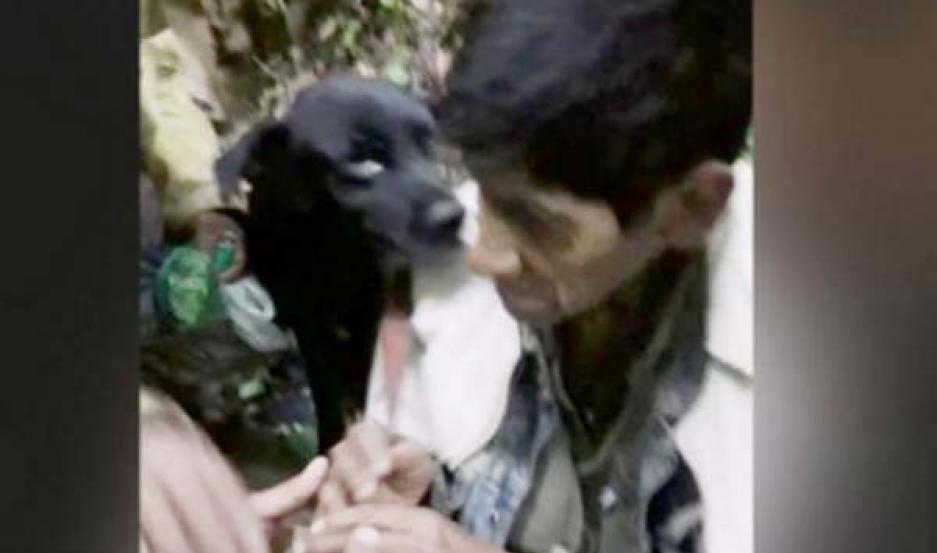 SALTA. Estanislao Chuchuy que estaba desaparecido y fue encontrado por su familia en medio del monte, en Güemes, junto a su perro.