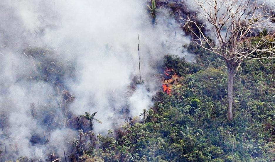El incendio en el Amazonas cubre la superficie comparada a la de Francia.