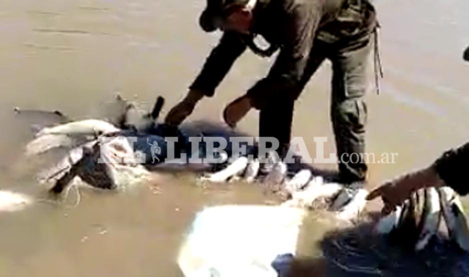 Los pescadores furtivos fueron descubiertos en plena infracción.