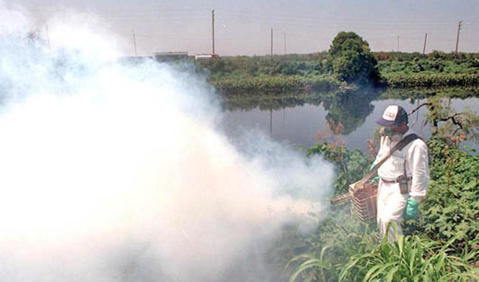 OBJETIVO. Buscan evitar la formación de criaderos y la proliferación de insectos en especial en estas épocas de altas temperaturas y elevados porcentajes de humedad.