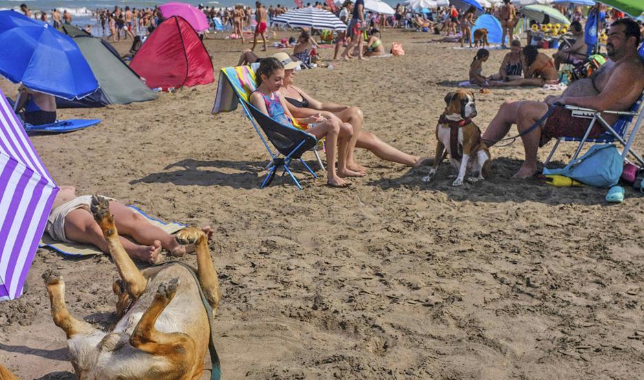 """Se llama """"Yes Playa Canina"""", y está ubicada sobre la ruta interbalnearia 11, kilómetro 5,5."""