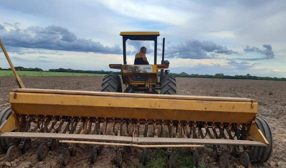 TIERRA. Los pequeños productores aprovechan la humedad del suelo.