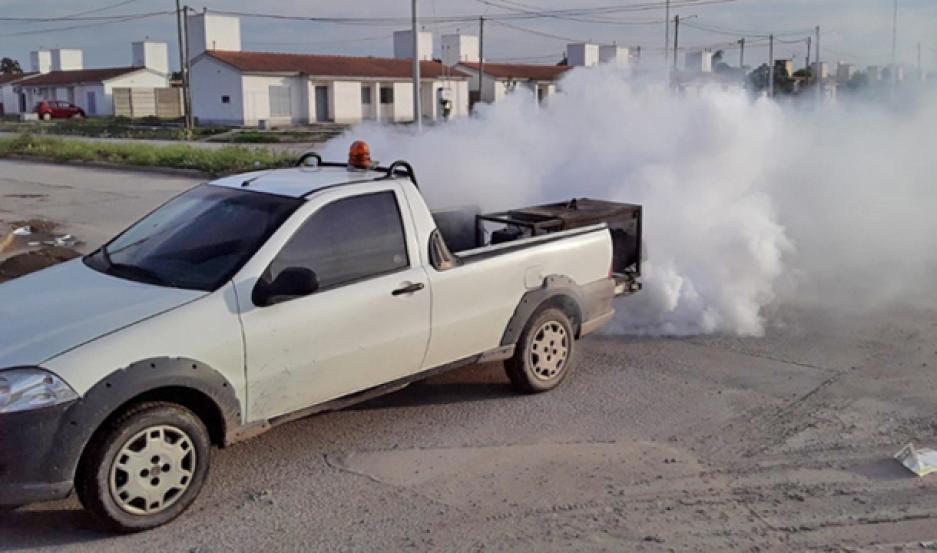 TRABAJO. La municipalidad busca combatir la proliferación de insectos como el mosquito Aedes aegypti.