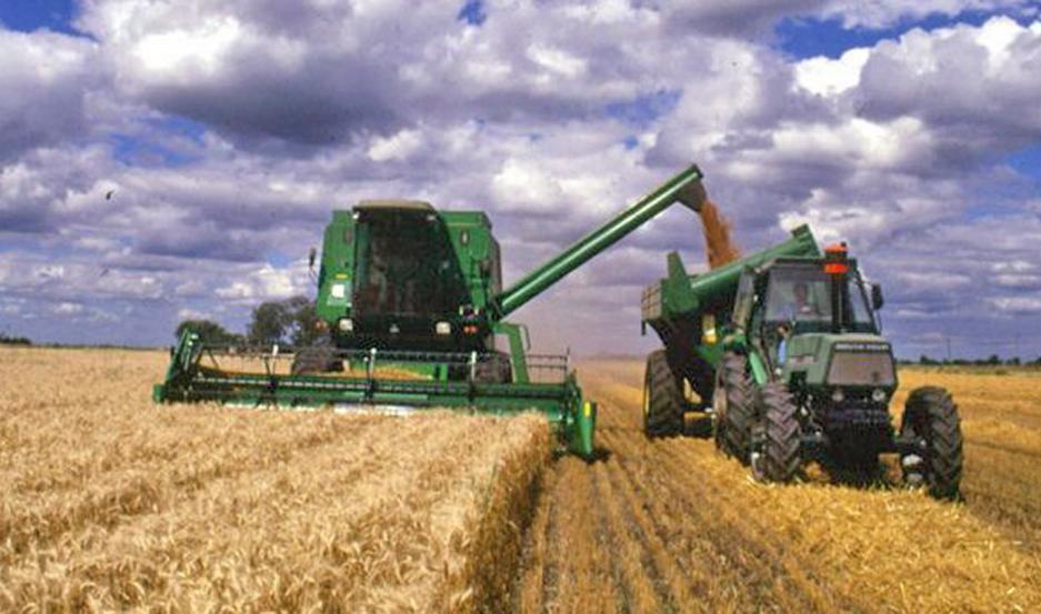 Brasil es el principal comprador de trigo argentino, y en 2020 compró 5 millones de toneladas de ese cereal.